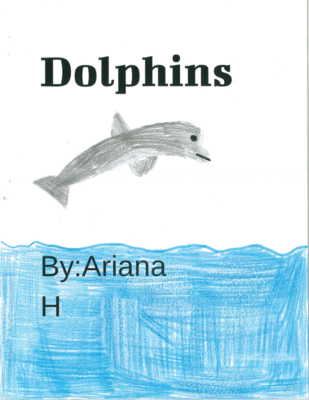 Dolphins  by Ariana H.
