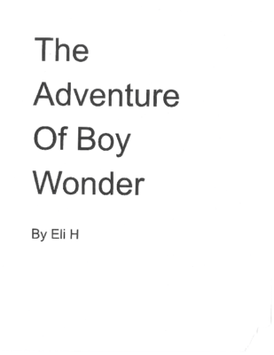 The Adventure of Boy Wonderby Eli H.