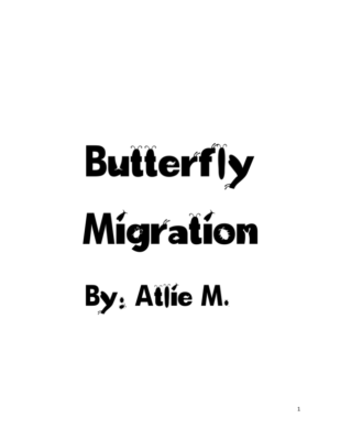 Butterfly Migration by Atlie M.