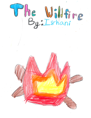 The Wildfireby Ishani V.