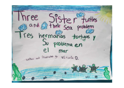 Three Sister Turtles and Their Sea Problem by Victoria D.