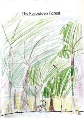 The Forbidden Forest by Zara K.