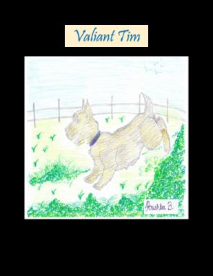 Valiant Tim by Anishka B.
